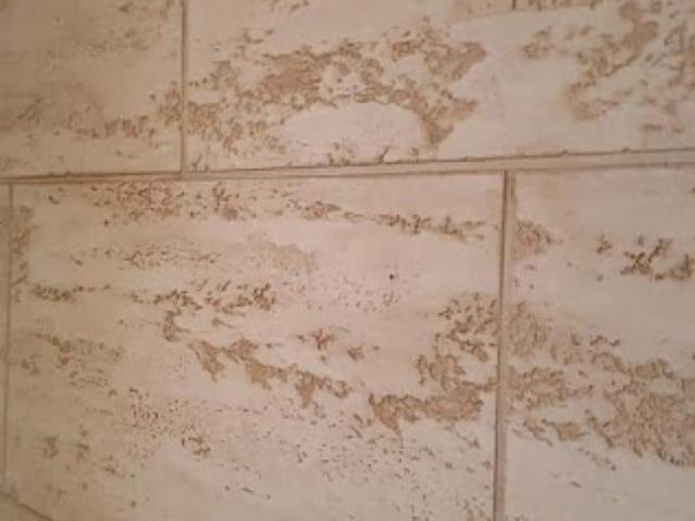 antički zid travertino u stanu